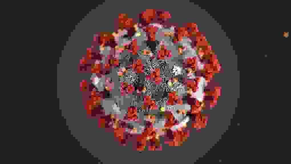 coronavirus-covid-19-une-angoisse-pesante.jpg